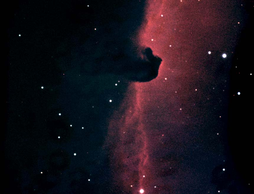 Horsehead Nebula (Barnard 33) in Orion
